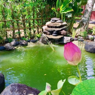 "Our Yantra Bali fruit garden with 4 ponds at the corners. Bentonite is ""the""magic product, it seals any leaking instantly."